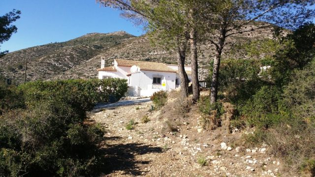 House in Jalon/Xalo - Vacation, holiday rental ad # 40951 Picture #17