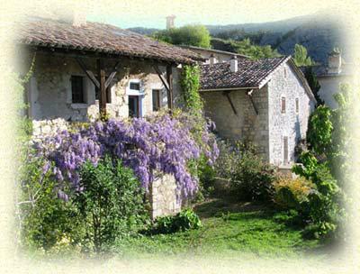 Maison La Piarre - 14 personnes - location vacances  n°41146