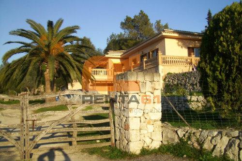 Maison Costitx - 8 personnes - location vacances  n°41289