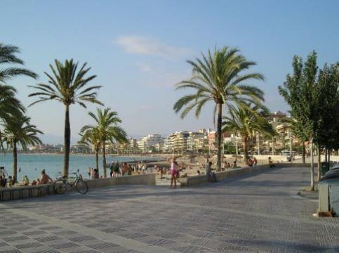 Appartement Palma De Mallorca - 5 personnes - location vacances  n°41455