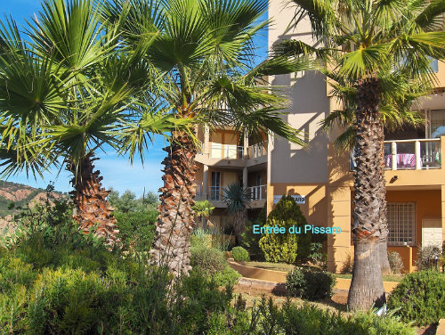 Flat in Theoule sur mer - Vacation, holiday rental ad # 41526 Picture #5
