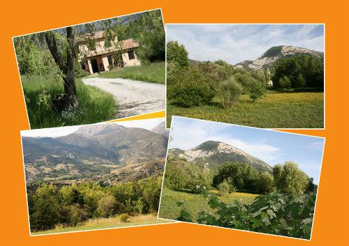 Haus Tartonne - 5 Personen - Ferienwohnung N°41710