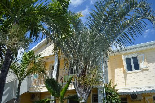 Maison Saint Pierre - 4 personnes - location vacances  n°41824
