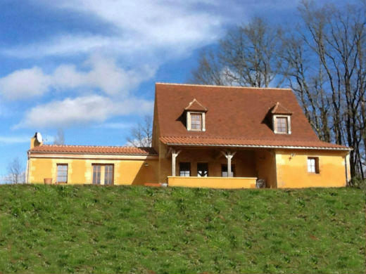House Les Eyzies De Tayac - 8 people - holiday home  #42054