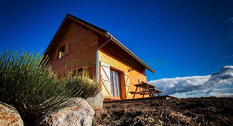 Chalet Chambon Sur Lac - 4 people - holiday home  #42268