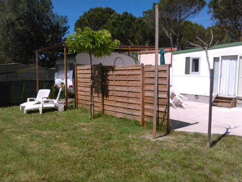 House Agde - 8 people - holiday home  #42273