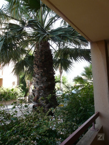 Studio in La ciotat for   5 •   animals accepted (dog, pet...)