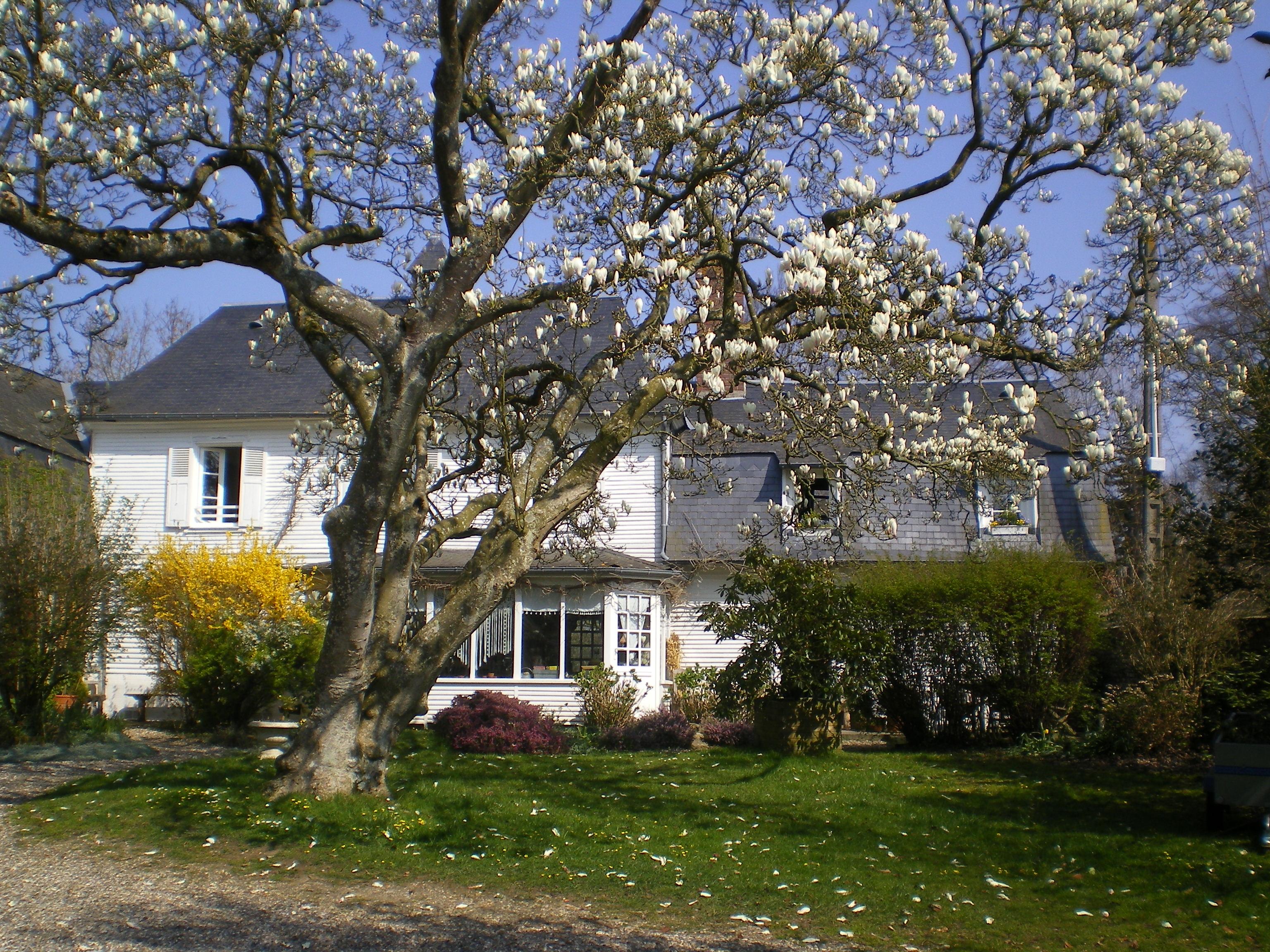 Maison Touffreville Sur Eu  - location vacances  n°42650