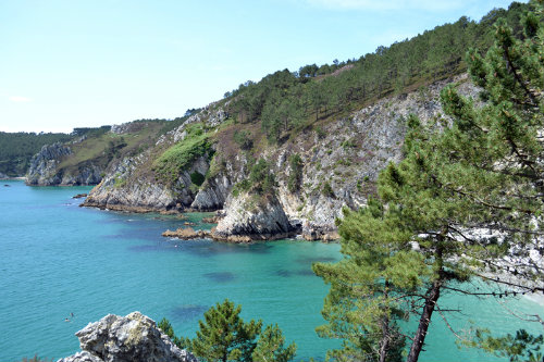House in crozon - Vacation, holiday rental ad # 42686 Picture #5