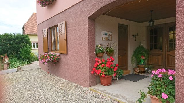 Gite in Epfig - Vacation, holiday rental ad # 42744 Picture #8
