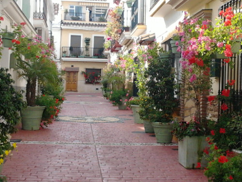 House in Estepona - Vacation, holiday rental ad # 42897 Picture #13