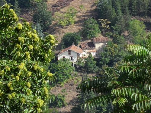 Studio Viviez - 4 personnes - location vacances  n°42909