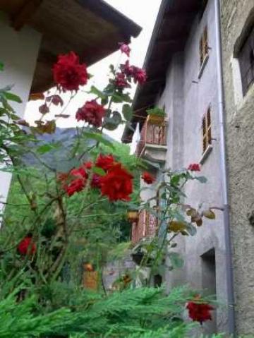 Haus Gravere - 3 Personen - Ferienwohnung N°42975