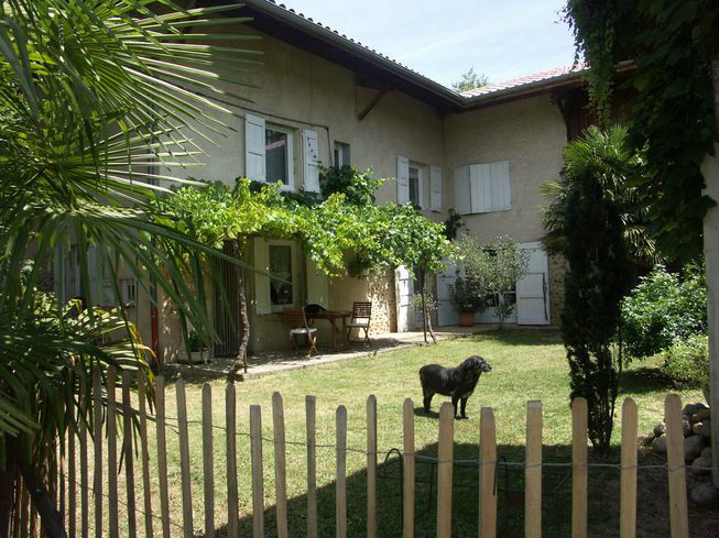 Farm Saint Lattier - 12 people - holiday home  #43035