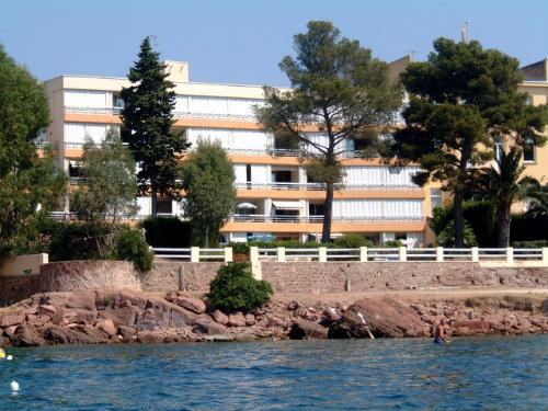 Studio Boulouris  - 4 personnes - location vacances  n°43067