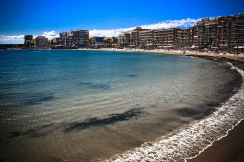 Flat in Torrevieja - Vacation, holiday rental ad # 43107 Picture #3