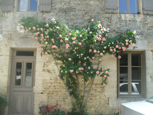 Bed and Breakfast in Chatillon sur seine - Vacation, holiday rental ad # 43243 Picture #11