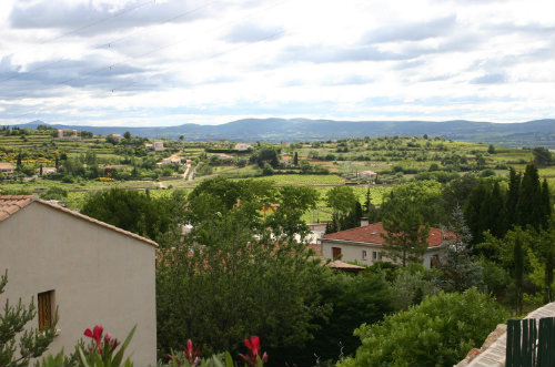 House in Clermont l'hérault - Vacation, holiday rental ad # 43450 Picture #3