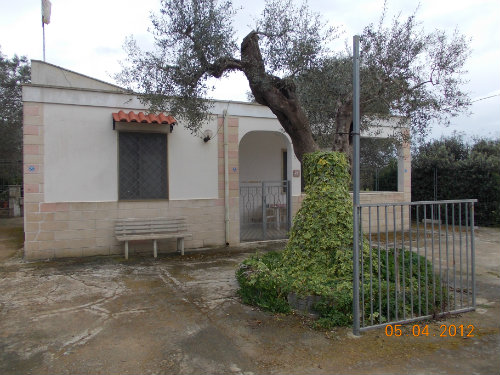 Maison 4 personnes Gallipoli - location vacances  n°43679