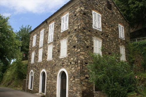 House Castellare Di Casinca - 4 people - holiday home  #43708