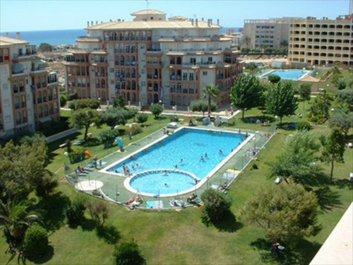 Flat Torrevieja - 5 people - holiday home  #43725