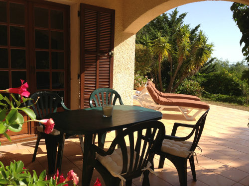 Flat Calvi - 4 people - holiday home  #43838