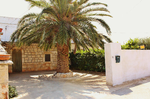 Maison Alberobello - 7 personnes - location vacances  n°44130