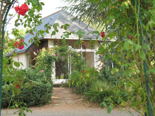 Gite Thouarcé - 4 people - holiday home  #44138