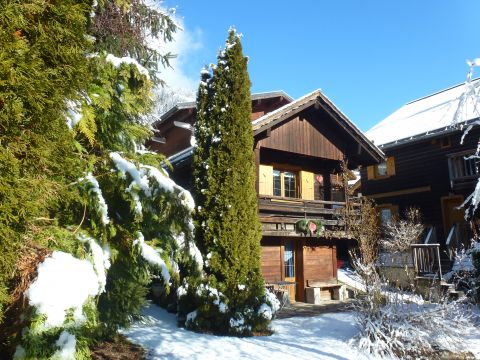 Chalet Le Grand Bornand - 4 people - holiday home  #44258