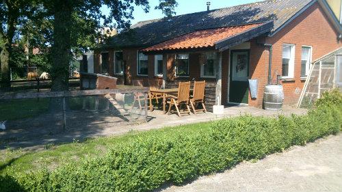 Maison Zuidwolde - 4 personnes - location vacances  n°44261