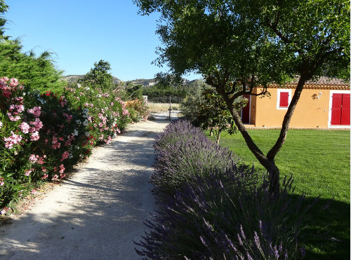 Bed and Breakfast in St rémy de provence - Vakantie verhuur advertentie no 44437 Foto no 2