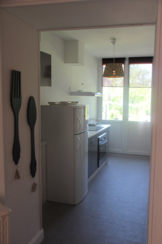 Gite in SAINT VICTOR - Vacation, holiday rental ad # 44534 Picture #6