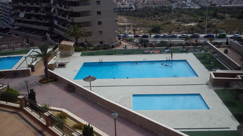 Appartement Arenales Del Sol, Alicante - 4 personnes - location vacances  n°44604