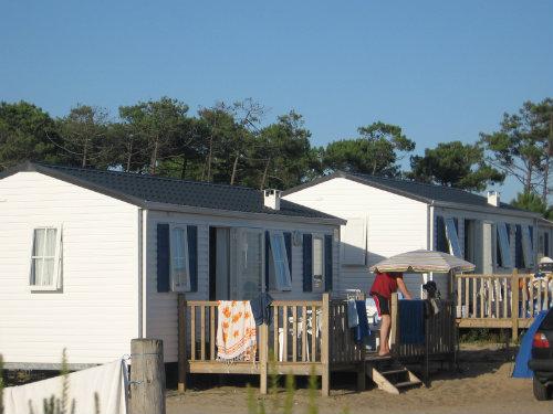 Chalet Montalivet - 6 personnes - location vacances  n°44666