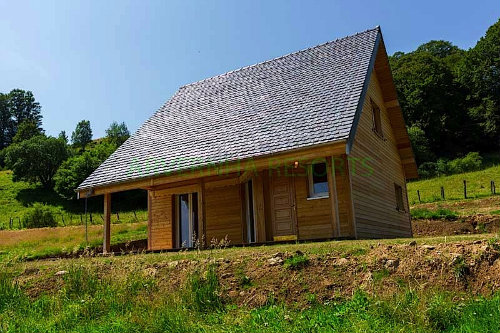 Chalet Chambon Des Neiges - 6 people - holiday home  #44798