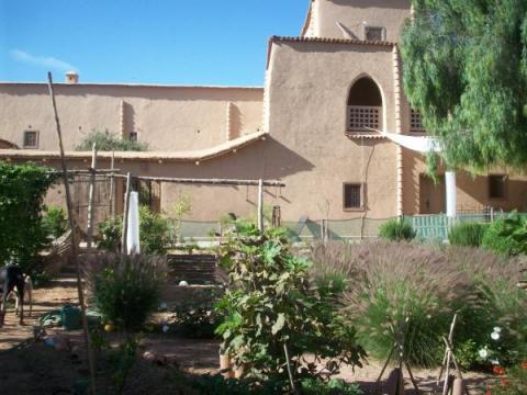 Maison Douar El Koudia - 23 personnes - location vacances  n°44806