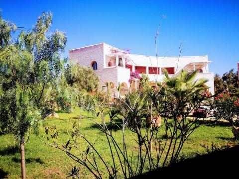 Maison Essaouira - 22 personnes - location vacances  n°44922