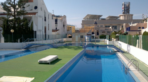 House in Torrevieja - Vacation, holiday rental ad # 45133 Picture #11
