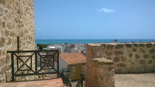 House in Torrevieja - Vacation, holiday rental ad # 45133 Picture #16