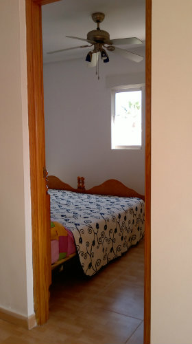 House in Torrevieja - Vacation, holiday rental ad # 45133 Picture #8