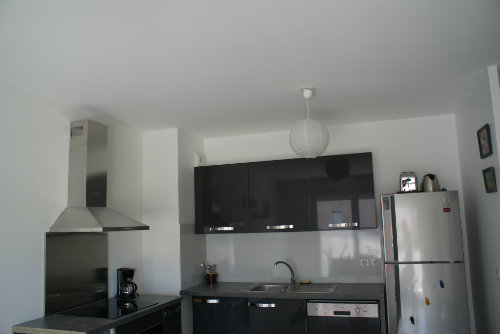 Flat in Marseille - Vacation, holiday rental ad # 45179 Picture #8