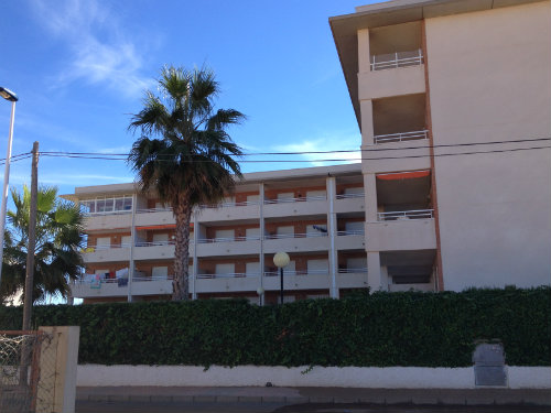 Flat in Murcia - Vacation, holiday rental ad # 45346 Picture #2