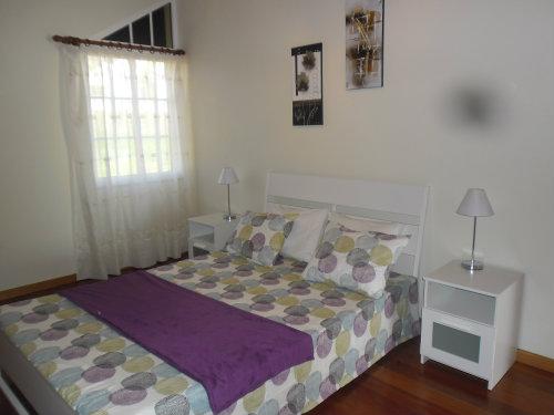 Maison Estreito Da Calheta - 9 personnes - location vacances  n°45558