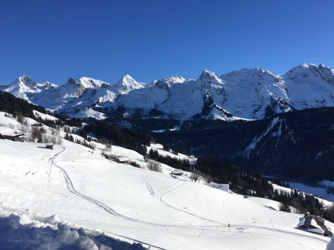 Chalet in Le grand bornand - Vacation, holiday rental ad # 45707 Picture #11
