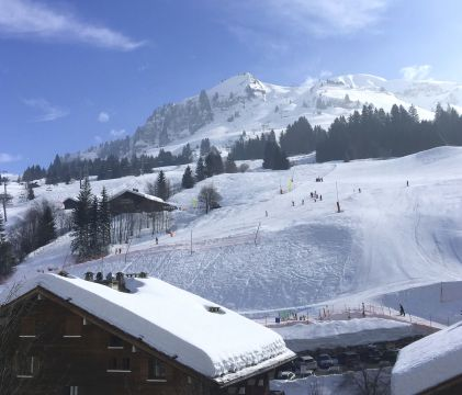 Chalet in Le grand bornand - Vacation, holiday rental ad # 45707 Picture #9