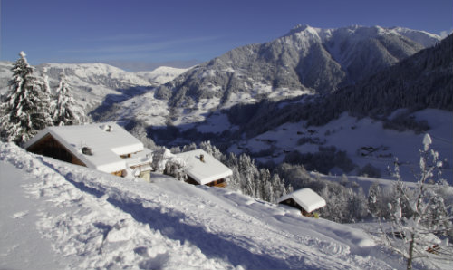 Chalet 12 people Arêches - holiday home  #45869