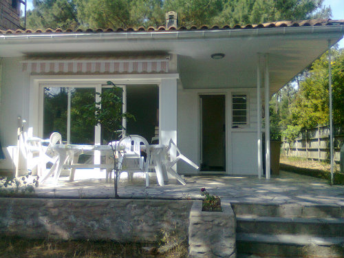 House 8 people Cap Ferret - holiday home  #45985
