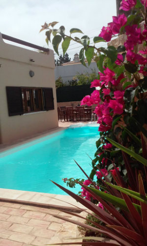 House in Carvoeiro - Vacation, holiday rental ad # 46044 Picture #6