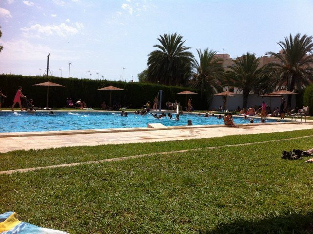 Flat in Torrevieja - Vacation, holiday rental ad # 46050 Picture #5