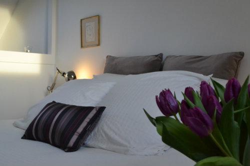Appartement 4 personnes Amboise - location vacances  n°46265